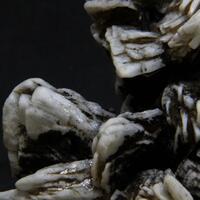 Adrael Minerals: 17 Feb - 23 Feb 2019